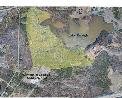 Lake Raleigh Woods